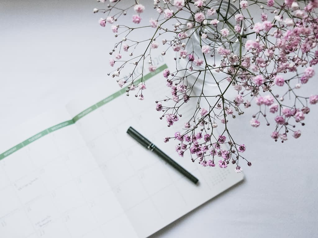 pink flowers besides notebook and pen on white background