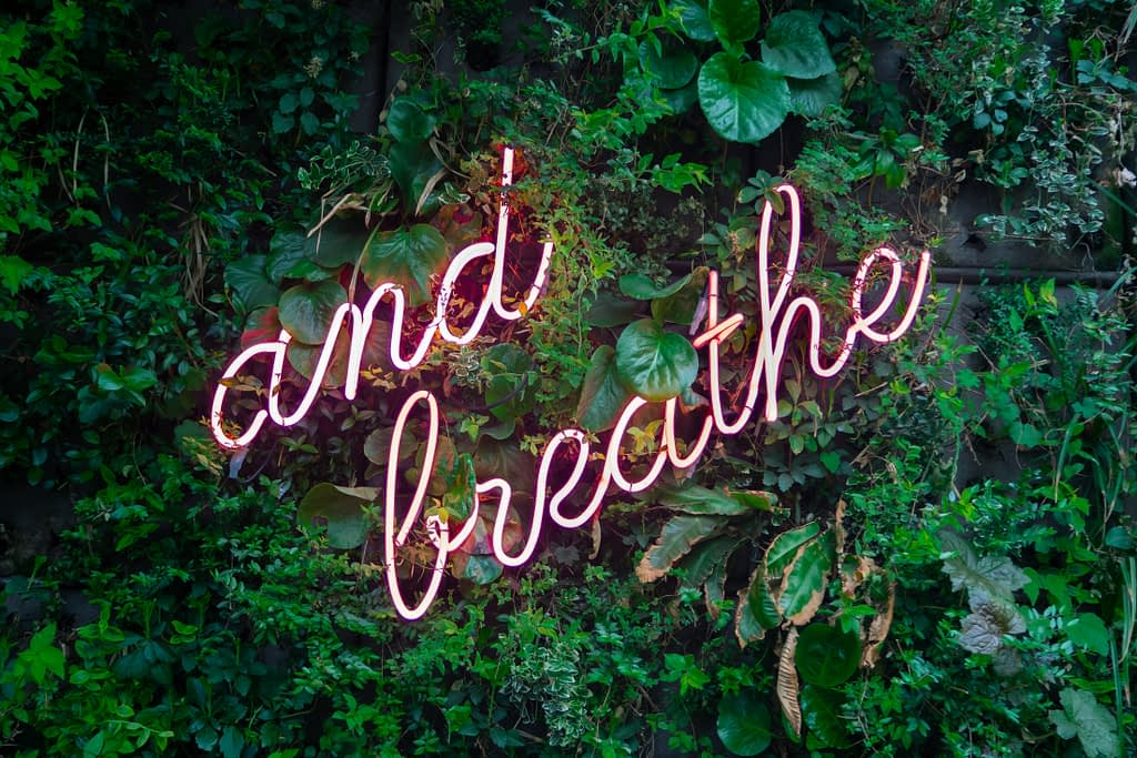 and breathe puple neon sign on leaf background