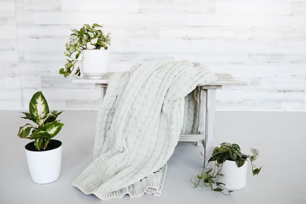 grey towel beside green plants