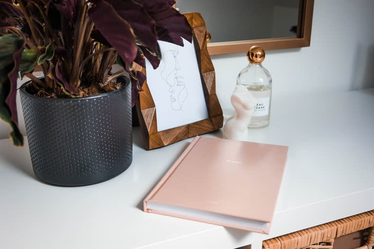 pink notebook and plant on white table