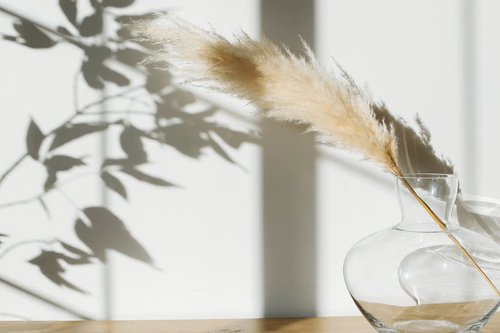 Pampass grass in clear glass vase