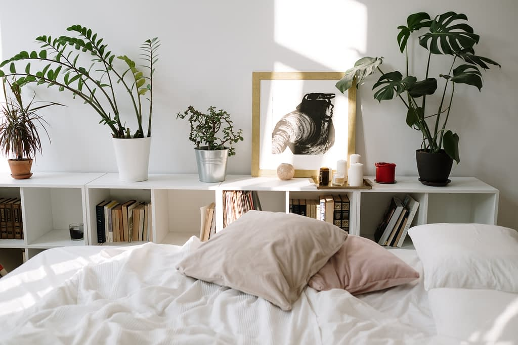 white bed linen beside green potted plant