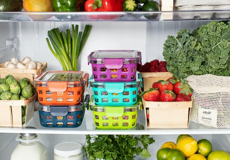 container in fridge